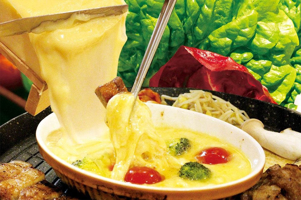 農園直送野菜で食べるプルコギ・ホルモン焼き食べ放題コース